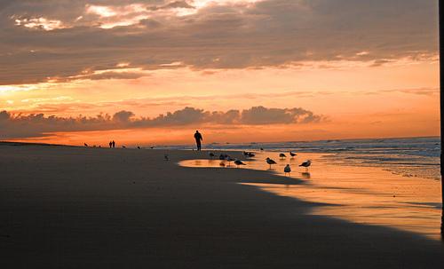 Walking Sunrise